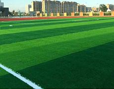XS-CD0002人造草坪足球场