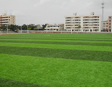 XS-CD0004人造草坪