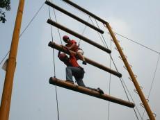 XS-CL002-1天梯